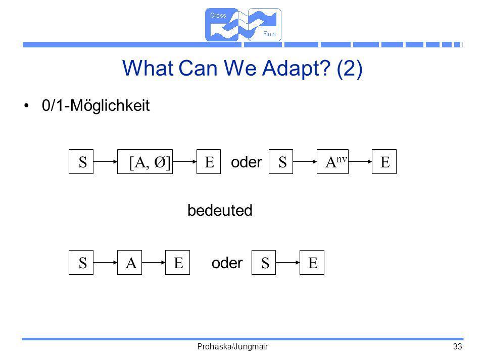 What Can We Adapt (2) 0/1-Möglichkeit S [A, Ø] E oder S Anv E